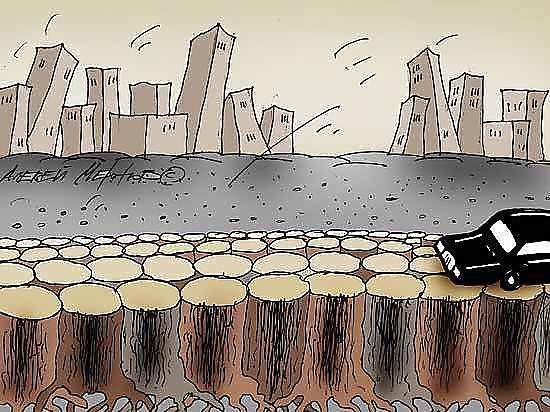 Общественники бьются с чиновниками за природу