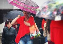 Холод, дожди и грозы: что сулит москвичам наступающее лето